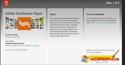 સ્ક્રીનશૉટ Adobe Shockwave Player Windows XP