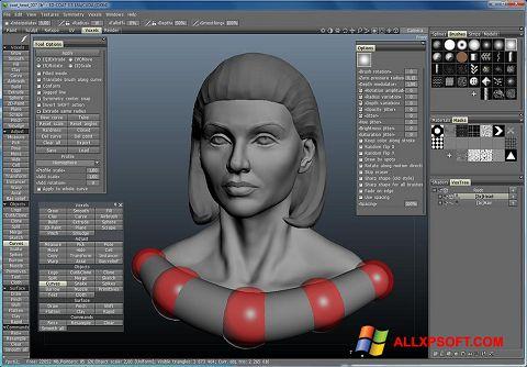 સ્ક્રીનશૉટ 3D-Coat Windows XP