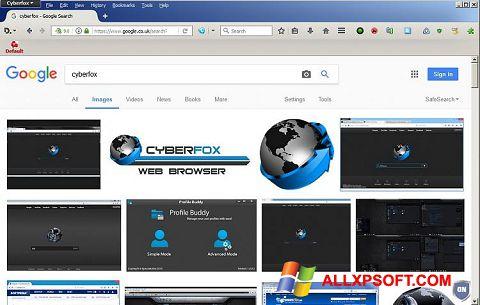 સ્ક્રીનશૉટ Cyberfox Windows XP