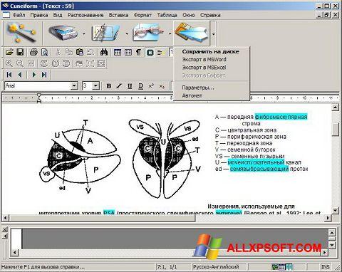 સ્ક્રીનશૉટ CuneiForm Windows XP