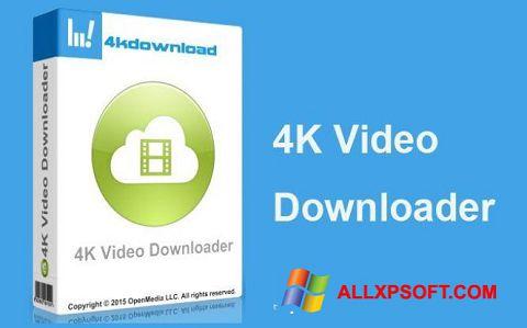 સ્ક્રીનશૉટ 4K Video Downloader Windows XP