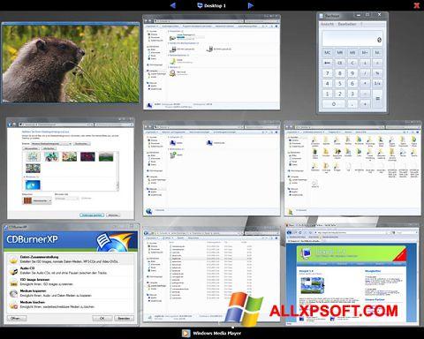 સ્ક્રીનશૉટ Dexpot Windows XP
