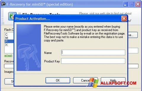સ્ક્રીનશૉટ F-Recovery SD Windows XP