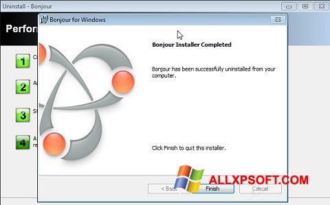 સ્ક્રીનશૉટ Bonjour Windows XP