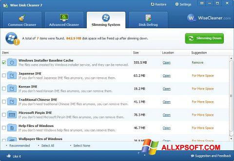 સ્ક્રીનશૉટ Wise Disk Cleaner Windows XP