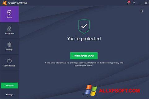 સ્ક્રીનશૉટ Avast! Pro Antivirus Windows XP