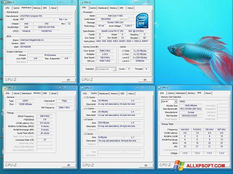 સ્ક્રીનશૉટ CPU-Z Windows XP