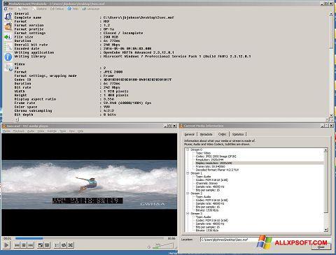 સ્ક્રીનશૉટ MediaInfo Windows XP