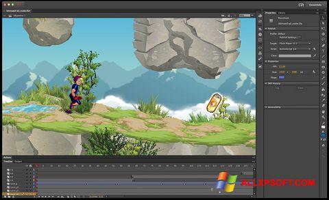 સ્ક્રીનશૉટ Adobe Flash Professional Windows XP