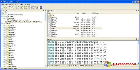 સ્ક્રીનશૉટ DMDE Windows XP